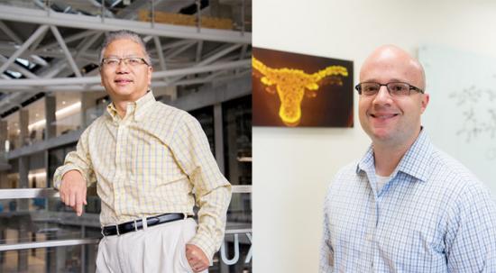 Alex Huang, Hal Alper, National Academy of Inventors