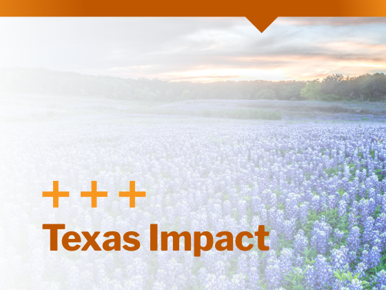 Central Texas Impact, Texas wildflowers