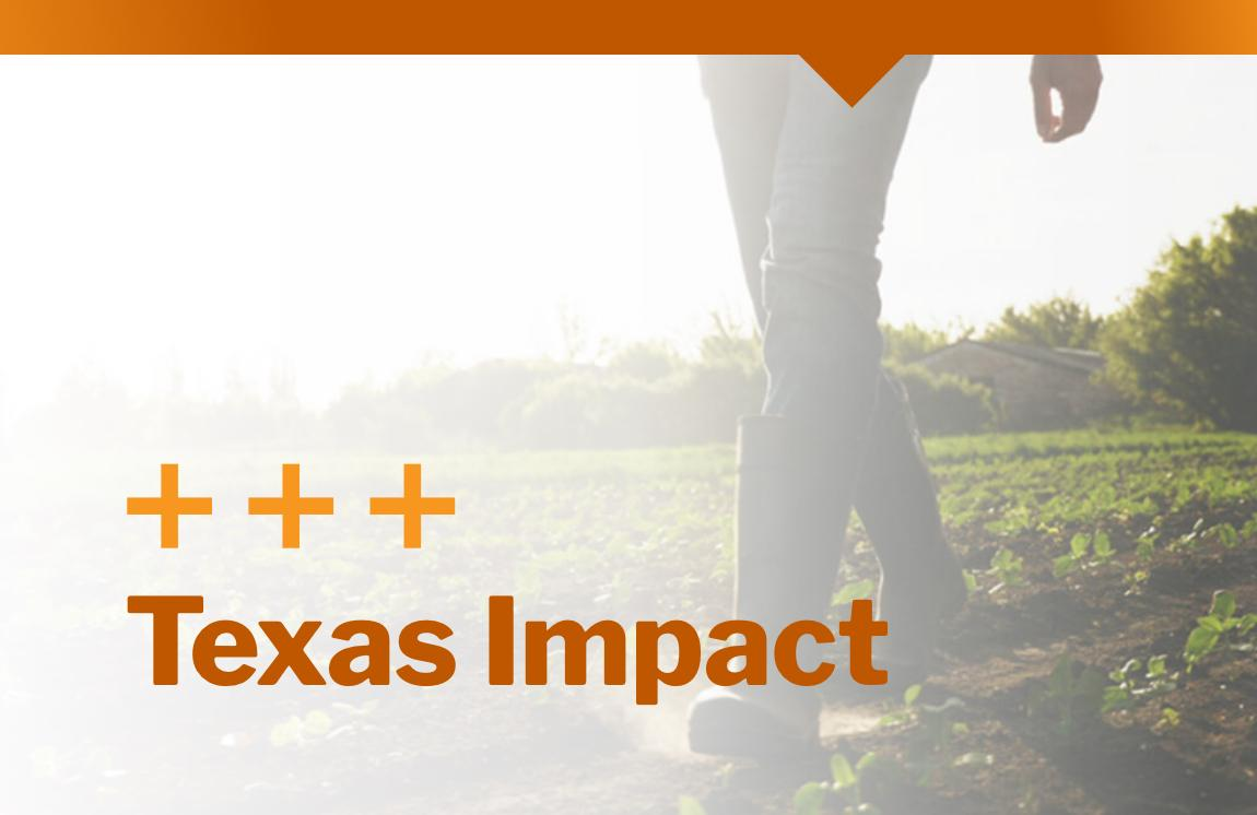 Texas Impact on the Panhandle