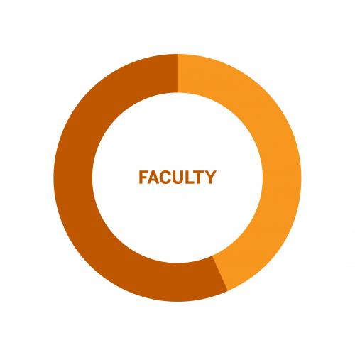Wheel chart of population of Faculty by Gender at the University of Texas