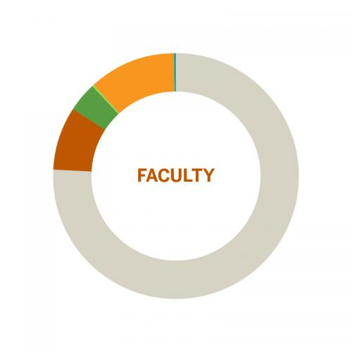 Wheel chart of population of Faculty by Race at the University of Texas