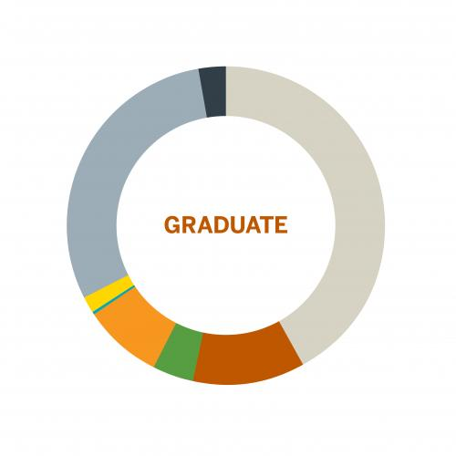 Wheel chart of population of Graduates by Race at the University of Texas