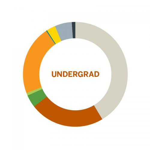 Wheel chart of population of Undergraduates by Race at the University of Texas