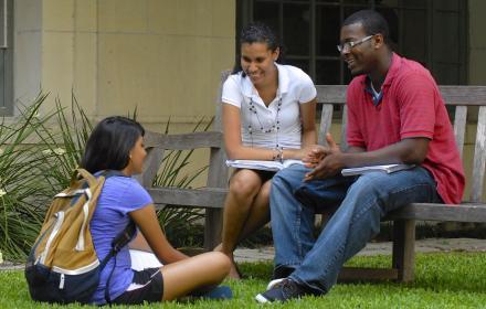 Undergraduate students
