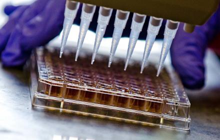Researchers use chemical assays.