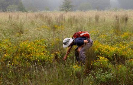 Stengl Lost Pines Biological Station